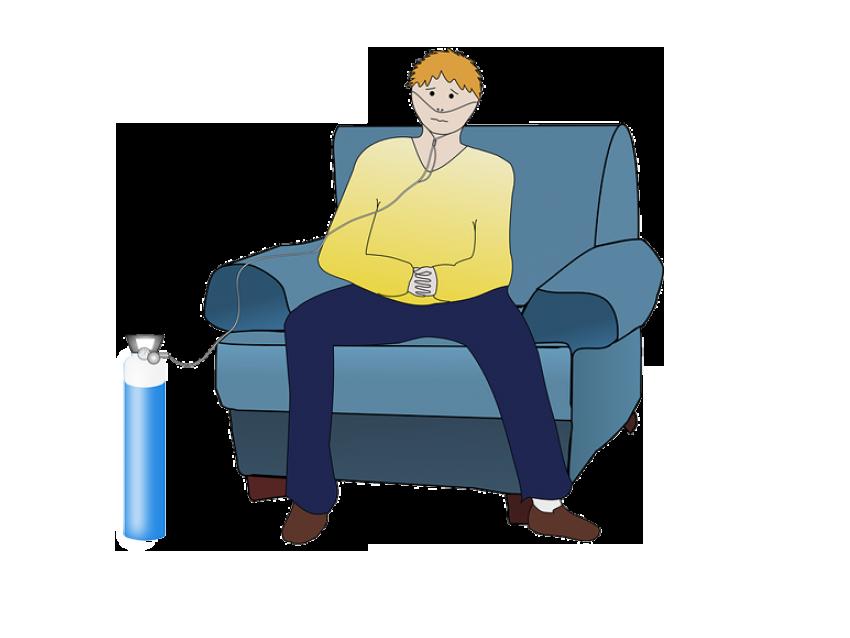 układ oddechowy