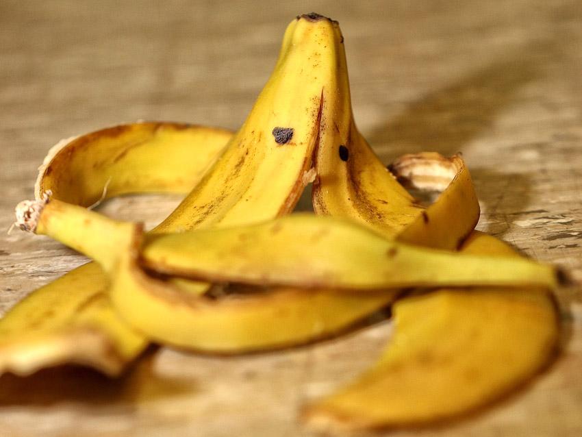 skórki z banana